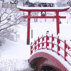 Fresh Snow (jasohill) Tags: winter red white snow weather japan season square shrine fresh iwate 日本 神社 torii 雪 冬 岩手県 2012 赤 白い jasohill 八幡平市