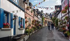 Saint Valry sur Somme (louis.labbez) Tags: france estuaire somme labbez saintvalrysursomme baie bay 80 ville town rue colored street house maison habitation volet bleu fleur pente