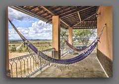 RELAXANTE. (manxelalvarez) Tags: relaxante redes hamacas varanda caatinga serto