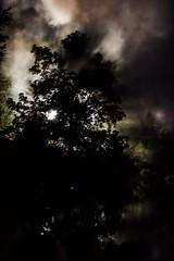 TempTrees5437 (woodsongsphoto) Tags: lake water pond pool night sky view nature transformus transformus16 transformus2016 asheville camp camping art smoke smoky smokes fire burn fires temple flow memorial spiritual spirit glow lute wood wooden creation create transform witness tree trees moon light silhouette