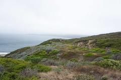 batteries to bluffs trail (pandeesh89) Tags: battery crosby luffs trails golden gate sf local nature visits weekend trips photography beauty green