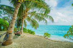 Beach Bum life. (ReinierVanOorsouw) Tags: maldives maldivian malediven thoddoo travelphotography sony reiniervanoorsouw  indianocean a7rii   maldiverne travelling island islandlife ocean  maldivas  sonya7rii sonya7r travelstoke maldive  reizen reiniernothere  maldivler  people human mensen turquoisewater turquoise islandparadise holiday ultimateholiday hammock hangmat oceanview beach beachlife