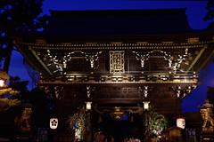 DSC_3929 (kazuchan_nara) Tags:   kyoto japan kitanotenmangu