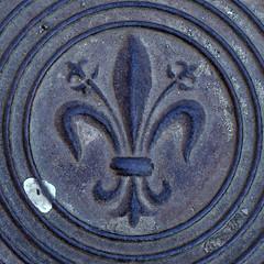 fleur-de-lis (Leo Reynolds) Tags: xleol30x squaredcircle panasonic lumix fz1000 cover fleurdelis sqset130