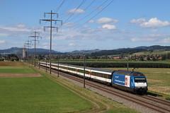 Re 460 079 Gottardo 2016 (Maxime Espinoza) Tags: re 460 079 gottardo 2016 sbb sff ffs train suisse zug kiesen