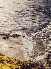 Splash of water.