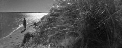 Back Shore (LowerDarnley) Tags: anscopixpanorama flippedlens reversedlens 35mm plasticcamera pei princeedwardisland ocean malpeque dunes dunegrass figure beach sun atlanticcanada maritimes