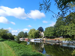 Canal Boats, River Avon, Bidford on Avon, Warwickshire, Sep 2016 (allanmaciver) Tags: canal boats trees river avon bidford warwick clouds weather green shades colours walk enjoy delight england midlands allanmaciver
