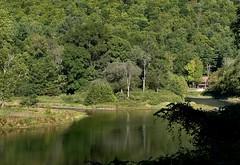 SL_092516j (Eric C. Reuter) Tags: ny catskills nature scenery peaseddyroad september 2016 092516 river