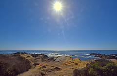 DSC_9550-Under the sun (nokhum.markushevich) Tags: ocen pacific sun pointlobos coast sky