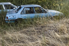 1985 Pontiac Sunbird (Curtis Gregory Perry) Tags: auto door blue usa abandoned car oregon sedan four photography photo nikon automobile unitedstates united holes northamerica motor pontiac bullet states sunbird dufur xe d300 automobil           hi