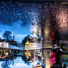 ~ twilight on the tramway ~ (Janey Kay) Tags: paris tree rain automne reflections shopping evening pluie soire puddles arbre t2 boulognebillancourt stcloud sdlp flaques tramway2 november2012 sonycybershotrx100 novembre2012 thereflectionofthetreewasbetterthantherealthingthatswhyiflippedit