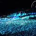 さがみ湖イルミリオン2012はLED400万球の豪快さの写真