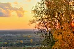 Simply Autumn (Kraichgau, Germany) (Andy Brandl (PhotonMix.com)) Tags: trees sunset cloud nature germany landscape deutschland nikon village autumncolors vineyards serene rheinebene badenwrttemberg malsch kraichgau malschenberg photonmix laoanphotography