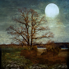 Lonely in moonshine. (BirgittaSjostedt.) Tags: wood old blue red orange moon lake abstract castle art history texture broken wall fairytale trash forest grit concrete rust iron paint pattern witch background grunge creative down run plaster dirty luna crack mysterious backdrop groove weathered aged marble rough split effect tat hex stigma myth mystic multi fable textured abused grungy cruel motat fashioned bej tatot