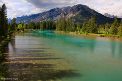 Bow River, Banff, Alberta, Canada (Black Diamond Images) Tags: mountain canada river rockies scenic alberta banff bowriver canadianrockies scenictours treasuresoftherockies