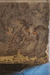Chateau-Muse Grimaldi, Cagnes-sur-mer (jacqueline.poggi) Tags: france castle ctedazur chteau trompeloeil phaeton grimaldi hibou alpesmaritimes cagnessurmer chteaufort provencealpesctedazur essor giovanbattistacarlone