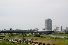 The Tama River near Futako-bashi (ykanazawa1999) Tags: bridge japan train river kanagawa kawasaki tamariver futakotamagawa futakoshinchi