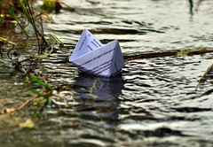 324   My Paper Boat  [Explored] (ArvinderSP) Tags: water paper boat nikon stream explore tamronaf70300mmf456dild d3100 arvindersp mypaperboat