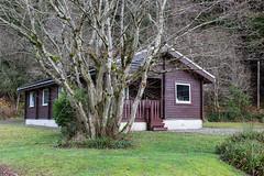 Pucks Lodge (Scott Kilbourne) Tags: forest trekking trek walking scotland hiking walk argyll hike lodge 5d canon5d cowal cowalpeninsula argyllandbute locheck eos5d pucksglen canoneos5dmarkiii canon5dmarkiii eos5dmarkiii puckslodge lamontlodges