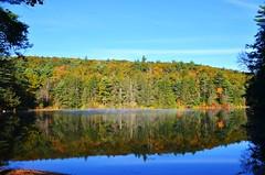 DSC_6725 (johnjmurphyiii) Tags: statepark autumn usa connecticut bigelowhollow stateforest nipmuck 06076 johnjmurphyiii