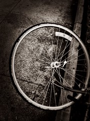 Tired Tire ...  (VivaSpyGirl) Tags: white black bike wheel tire lay iphone layingdown knockedover