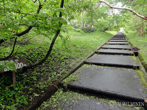 Japanese park in aomori