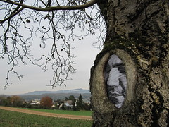 "MrReeFX 2012 ""Branching Out"" in Oberwil ღஐƸ̵̡ӜƷஐღ (@//(*_*)\\@ MrReeFX @//(*_*)\\@) Tags: tree art nature switzerland basel treeface treeman bl artbasel baselland oberwil fineartphotos mrreefx mysteryeffects"