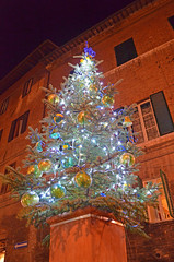 for the love of : siena (ForTheLoveOfItaly) Tags: italy italia unescoworldheritagesite unesco tuscany siena tuscano christmasinitaly fortheloveofitaly