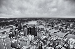 A B&W view from the roof of the Steel Building HDR (Dave DiCello) Tags: beautiful skyline photoshop nikon pittsburgh tripod usxtower christmastree mtwashington northshore northside bluehour nikkor hdr highdynamicrange pncpark thepoint pittsburghpirates cs4 ftpittbridge steelcity photomatix beautifulcities yinzer cityofbridges tonemapped theburgh clementebridge smithfieldstbridge pittsburgher colorefex cs5 ussteelbuilding beautifulskyline d700 thecityofbridges pittsburghphotography davedicello pittsburghcityofbridges steelscapes beautifulcitiesatnight hdrexposed picturesofpittsburgh cityofbridgesphotography