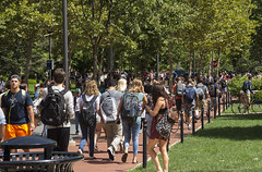 Back in the Grind_MG_0822 (CFurjanic93) Tags: students pennstateuniversity pennstate alumniassociation streets crowd collegecampus summer2016 school insession classes herd trees campuslife walking return arrival