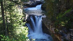 Small Falls (Andrew Pizzinato) Tags: johnstoncanyon alberta canada banffnationalpark water stream river tree trees outdoors hiking
