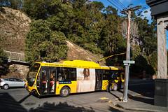 Tinakori Road (andrewsurgenor) Tags: transit transport publictransport nzbus gowellington electric trackless trolleybus trolleybuses wellington nz streetscenes bus buses omnibus yellow obus busse citytransport city urban newzealand