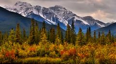 Portrait of autumn (NUNZG) Tags: mountains autumn canadian rockies landscape nature outdoor colors
