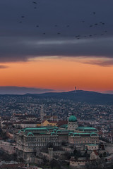 Buda castle at sunset (Vagelis Pikoulas) Tags: budapest buda hungary europe 2016 winter january view city capital cityscape castle castel canon 6d sky birds clouds cloud cloudy colour colours sun sunset tamron 70200mm vc