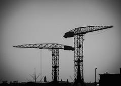 Sky Crane. (ian.emerson36) Tags: cranes crane hw belfast ships engineering docks ireland blackwhite