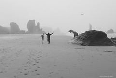 Foggy beach (B&W) (peter.a.klein (Boulanger-Croissant)) Tags: beach fog mist ocean pacific sand rocks monoliths sea stacks dinosaur jurassic cretaceous trex tyrannosaurus humor funny costume blackandwhite bw black white blanc noir noiretblanc negro blanco schwarz weiss oregon pacificnorthwest bandon