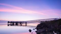 A summer morning in Holland (digiphoto.nl) Tags: holland netherlands medemblik sunrise triggertrap korevaar bridge pier blue purple water longexposure littlestopper