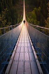 Endless Bridge (Constantin Fellermann) Tags: selfie portrait bridge footbridge germany landscape nature building brcke fusgngerbrcke sunset sonnenuntergang goldenhour goldenestunde