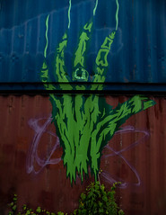 Green Fingered (Steve Taylor (Photography)) Tags: greenfingered ring scratches skeleton rotting art graffiti mural streetart wall cerise blue green red odd strange crazy weird newzealand nz southisland canterbury christchurch cbd city corrugated metal iron hand skeletal
