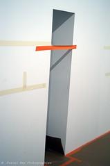 _DSC3309_v1 (Pascal Rey Photographies) Tags: mac musedartcontemporain muse museum art fresquesurbaines peinturesurbaines urbanart streetart lyon lugdunum walls murs peinture abstraction abstract