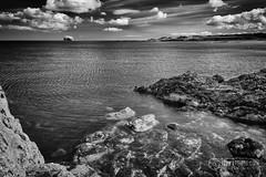 North Berwick - Bass Rock - 01.jpg (ibriphotos) Tags: blackandwhite northberwick gannet beach bass eastlothian seabird break friends polariser riverforth polarizer firthofforth daytrip weekend caravan