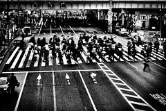 les mes battues (www.danbouteiller.com) Tags: japan japon japonia tokyo ueno city ville urban photo rue photoderue street streetscene streetlife streets streetshot streetphoto streetphotography crosswalk people walking road pavement asian asiatique asie monochrome monochromatic mono black white noir blanc bw nb blackandwhite blackwhite blacknwhite noiretblanc noirblanc canon c canon5d eos 5dmk2 5d 50mm 50mm14 5d2 5dm2