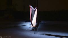 Vinci 2016 001 (Aleks Photo (Aleks Studio)) Tags: festadellunicorno unicorno2016 unicorno cosplay photoset evento2016 aleksphoto vinci harp arpa