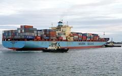 """MAERSK MONCTON"" - IMO 8618308 (Rick Vince) Tags: maerskmoncton imo 8618308 containervessel containership merchantship merchantvessel portoffelixstowe"