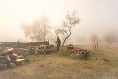 Firewood (Irene Becker) Tags: autumn fall misty fog fence countryside serbia foggy firewood autumnfog balkan srbija farmyard mistymorning taramountain zaovine centralserbia zapadnasrbija taranationalpark taraplanina заовинскојезеро imagesofserbia заовине novavezanja serbianlandscapes
