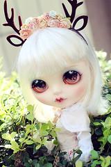 Custom Blythe vanilla