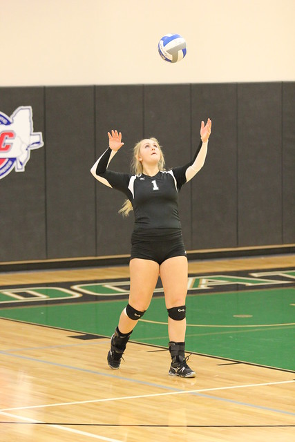 Sophomore Shelby Henderson led the Wildcats with 16 digs on Friday night against New Haven int he season opener. Copyright 2013; Wilmington University. All rights reserved.