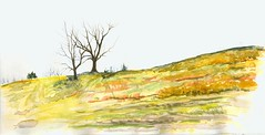 Windswept Hill (Artist Naturalist-Mike Sherman) Tags: november art rural landscape michigan farm transparent onlocation notphotography midwestern watercolorpainting pleinaire midmichigan danielsmithwatercolors