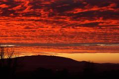 Red Sky (Natasha Bridges) Tags: morning red sky sunrise dawn shropshire fields wrekin